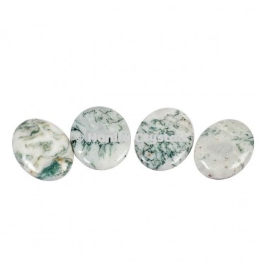 Tree Agate Palm Stones