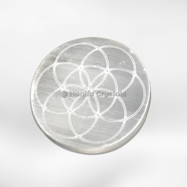 Seed Of Life Selenite Charging Cercle