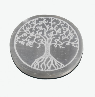 Tree Of Life Selenite Charging Cercle